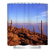 Salar De Uyuni And Cacti At Sunrise Shower Curtain