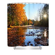 Salmon River Sanctuary Shower Curtain by Skye Ryan-Evans
