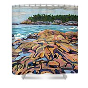 Salmon Rocks Shower Curtain
