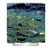 Salmon Run 4 Shower Curtain