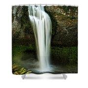 Salt Creek Falls 2 Shower Curtain
