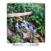 Mill Creek Canyon - Utah Shower Curtain