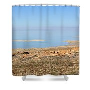 Salt Lake View Shower Curtain