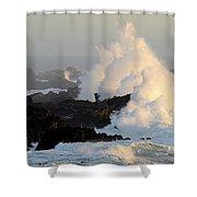 Salt Point Wave Shower Curtain