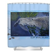 Salt Water Ballet - Manatees - 2 Shower Curtain