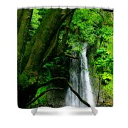 Salto Do Prego Waterfall Shower Curtain