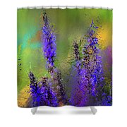 Salvia May Night Art -purple Modern Abstract Art Shower Curtain