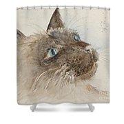 Sam Shower Curtain