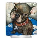 Sammy The French Bulldog Shower Curtain