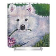 Samoyed Pup With Peony Shower Curtain