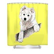 Samoyed Puppy Shower Curtain