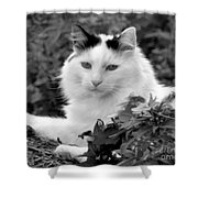 Sampson In Black And White Shower Curtain