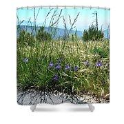 San Bernardino Mountains - Southern California 5 Shower Curtain