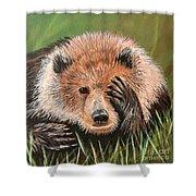 San Diego Bear Shower Curtain