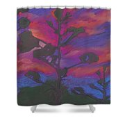 San Diego Sunset Shower Curtain