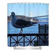 San Francisco - Oakland Bay Bridge - Seagull View Shower Curtain