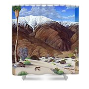 Snow Creek  Shower Curtain