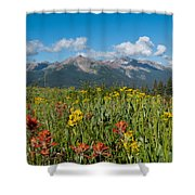 San Miguel Mountains Shower Curtain