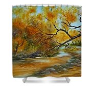 San Pedro River Shower Curtain