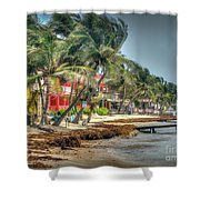 San Pedro Windy Day Shower Curtain