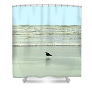 Sand And Sea 8 Shower Curtain