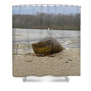 Sand And Shell Shower Curtain