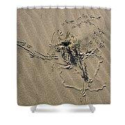 Sand Doodles Shower Curtain