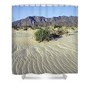 Sand Dunes & San Ysidro Mountains At El Shower Curtain