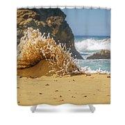 Sand Monster Shower Curtain