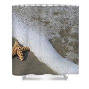 Sand Patterns Shower Curtain