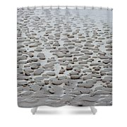 Sand Sculptures 2 Shower Curtain
