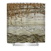 Sand Stone And Reeds Shower Curtain