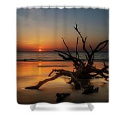 Sand Surf And Driftwood Shower Curtain