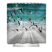 Sandestin Seagulls C Shower Curtain
