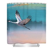 Sandhill Crane And Misty Marshes Shower Curtain