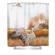 Sandhill Cranes-jp3161 Shower Curtain