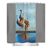 Sandhill Morning Moment Shower Curtain