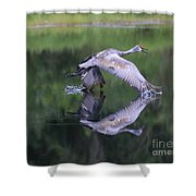 Sandhill Retreat Shower Curtain