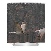 Sandhills In Flight Shower Curtain