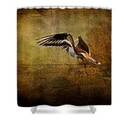 Sandpiper Piping Shower Curtain