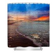 Sandpiper Sunrise Shower Curtain