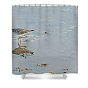 Sandpiper's Mirror Shower Curtain