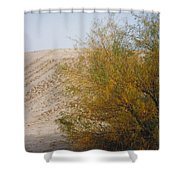 Sands Of Monahans - 2 Shower Curtain