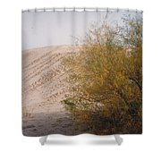 Sands Of Monahans Shower Curtain