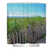 Sands Of The Dune Shower Curtain