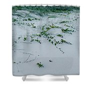 Sandscape Vines Shower Curtain