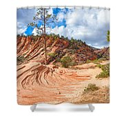 Sandstone Carvings Shower Curtain