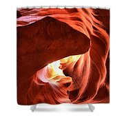 Sandstone Dog Abstract Shower Curtain