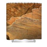 Sandstone Fins Shower Curtain