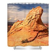 Sandstone Gopher Shower Curtain